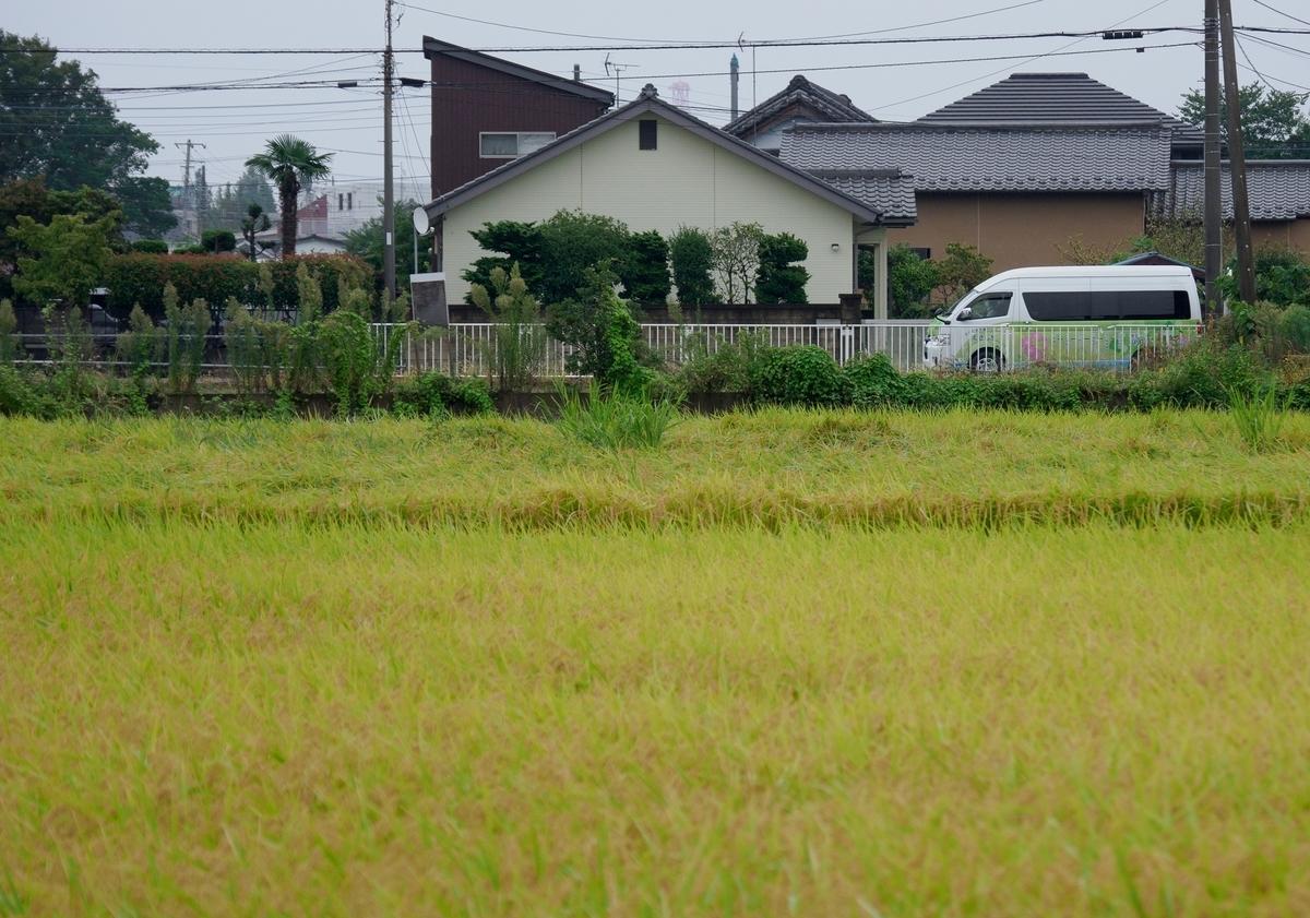 f:id:HOSHIIMO:20211002012323j:plain