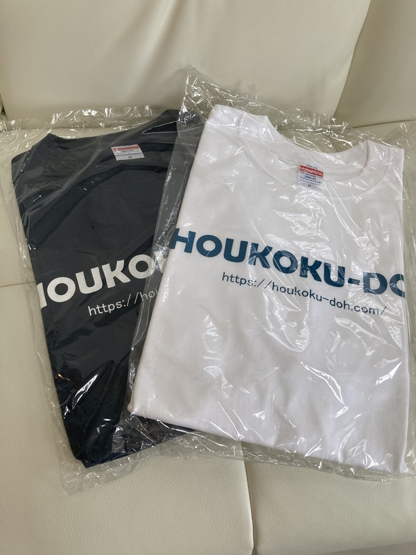 f:id:HOUKOKU-DOH:20210506051453j:plain