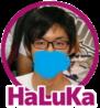 f:id:HaLuKa:20170616010703p:plain