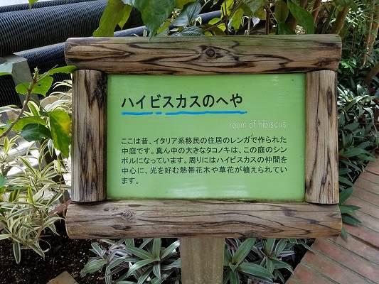 f:id:Hachi32TK:20170612200239j:plain