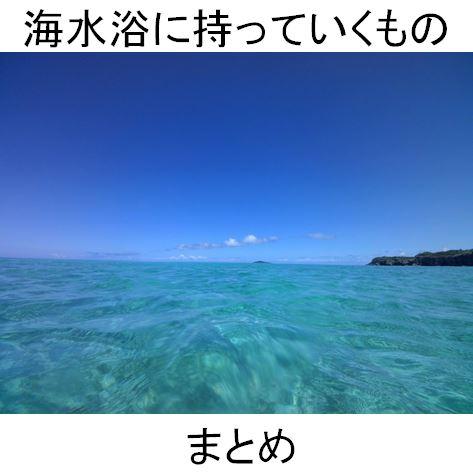 f:id:Hachi32TK:20170621231055j:plain