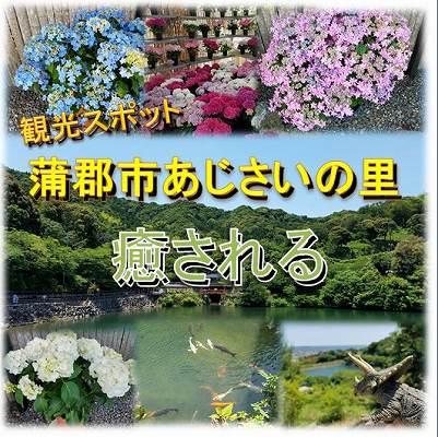 f:id:Hachi32TK:20170625184329j:plain