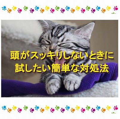 f:id:Hachi32TK:20170628232424j:plain
