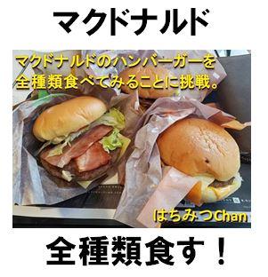 f:id:Hachi32TK:20170704202502j:plain