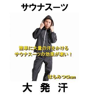f:id:Hachi32TK:20170704204935j:plain