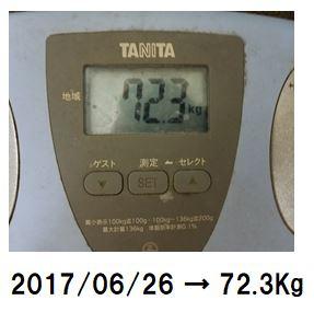 f:id:Hachi32TK:20170705222853j:plain