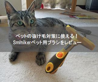 f:id:Hachi32TK:20170821193224j:plain
