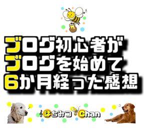 f:id:Hachi32TK:20170821214739j:plain