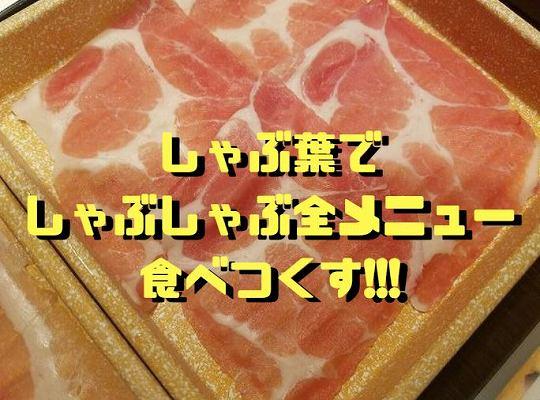 f:id:Hachi32TK:20180212191220j:plain