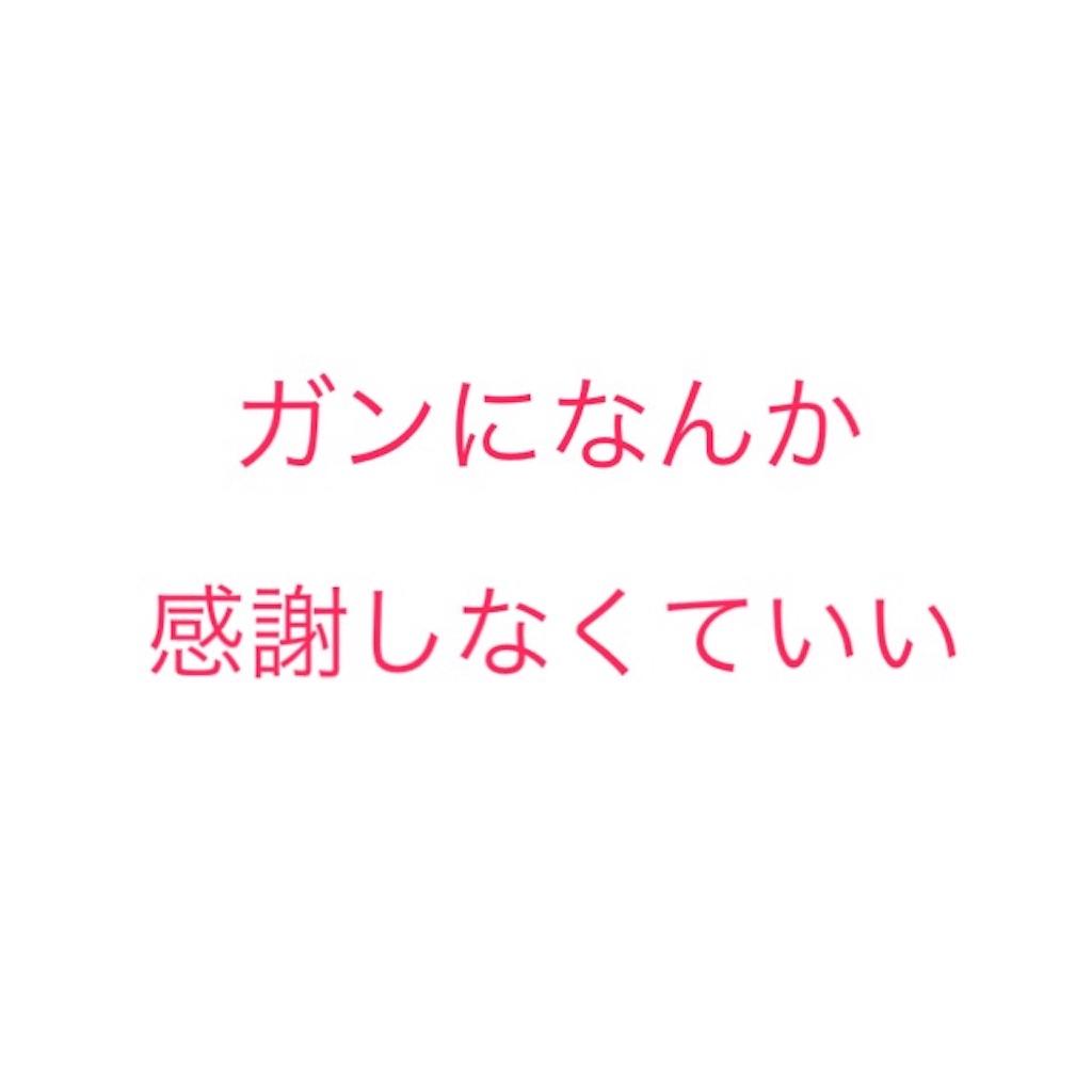 f:id:Hachidori:20170320230009j:image