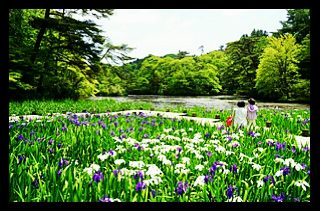 f:id:HairSalonYamashita3819:20170506211121j:image