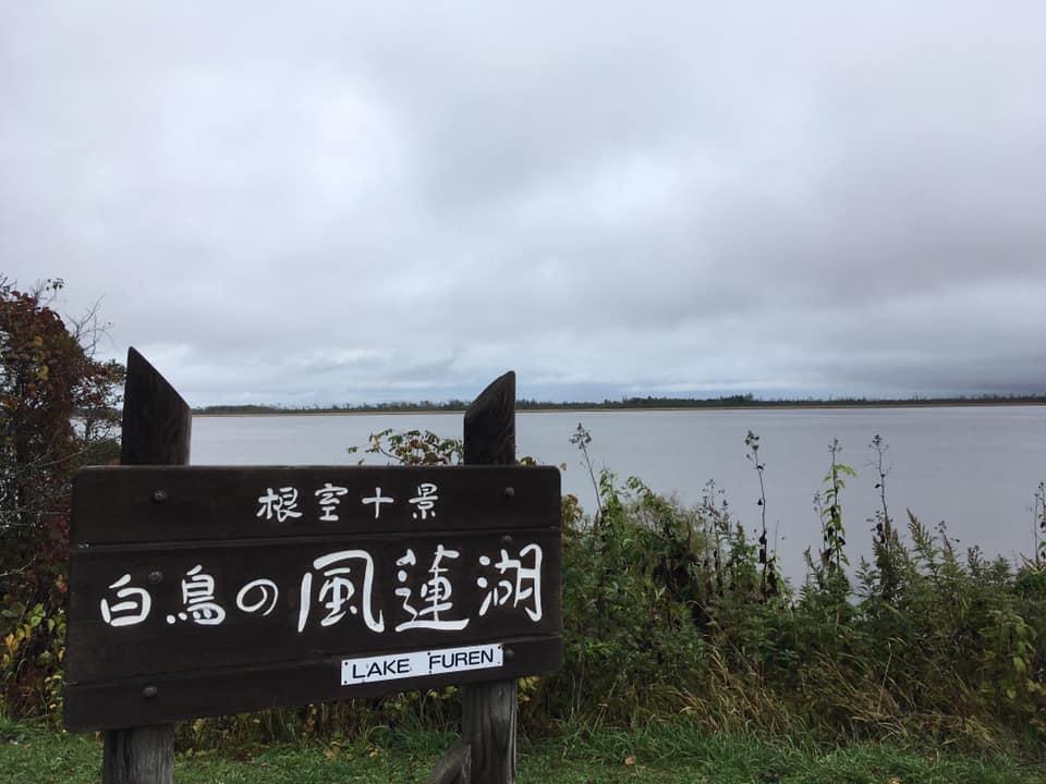 f:id:Hakuto-MA:20200304003639p:plain