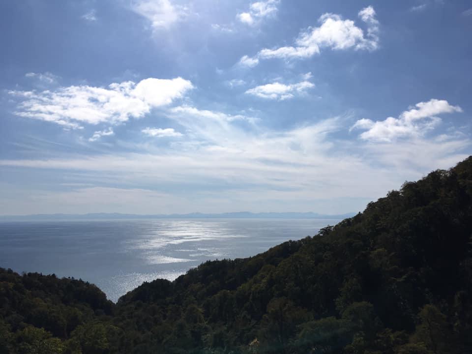 f:id:Hakuto-MA:20200316115223p:plain