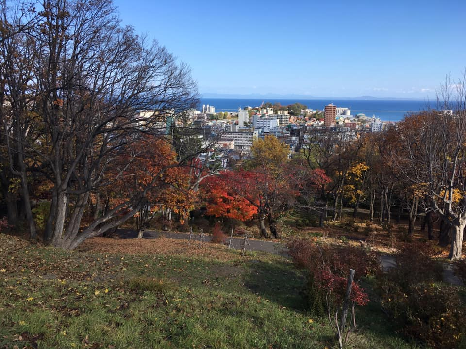 f:id:Hakuto-MA:20200420235544p:plain