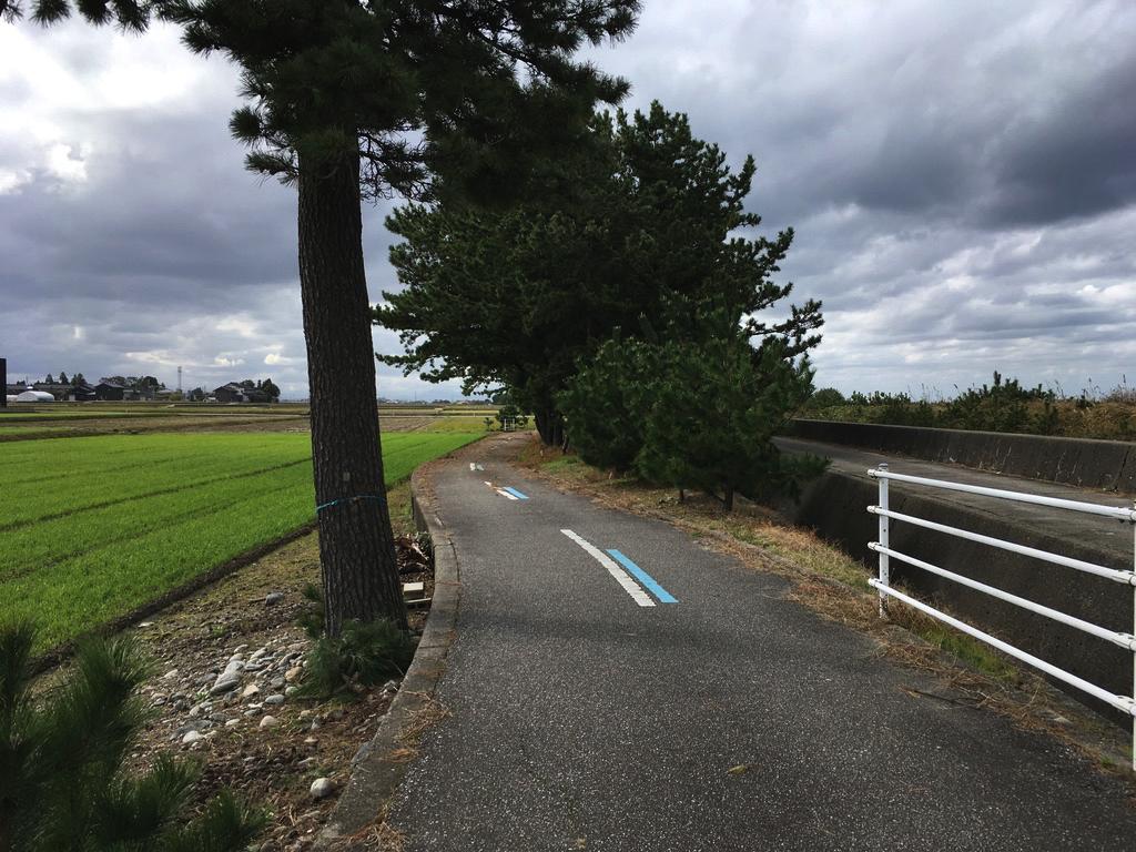 f:id:Hakuto-MA:20200519182110p:plain