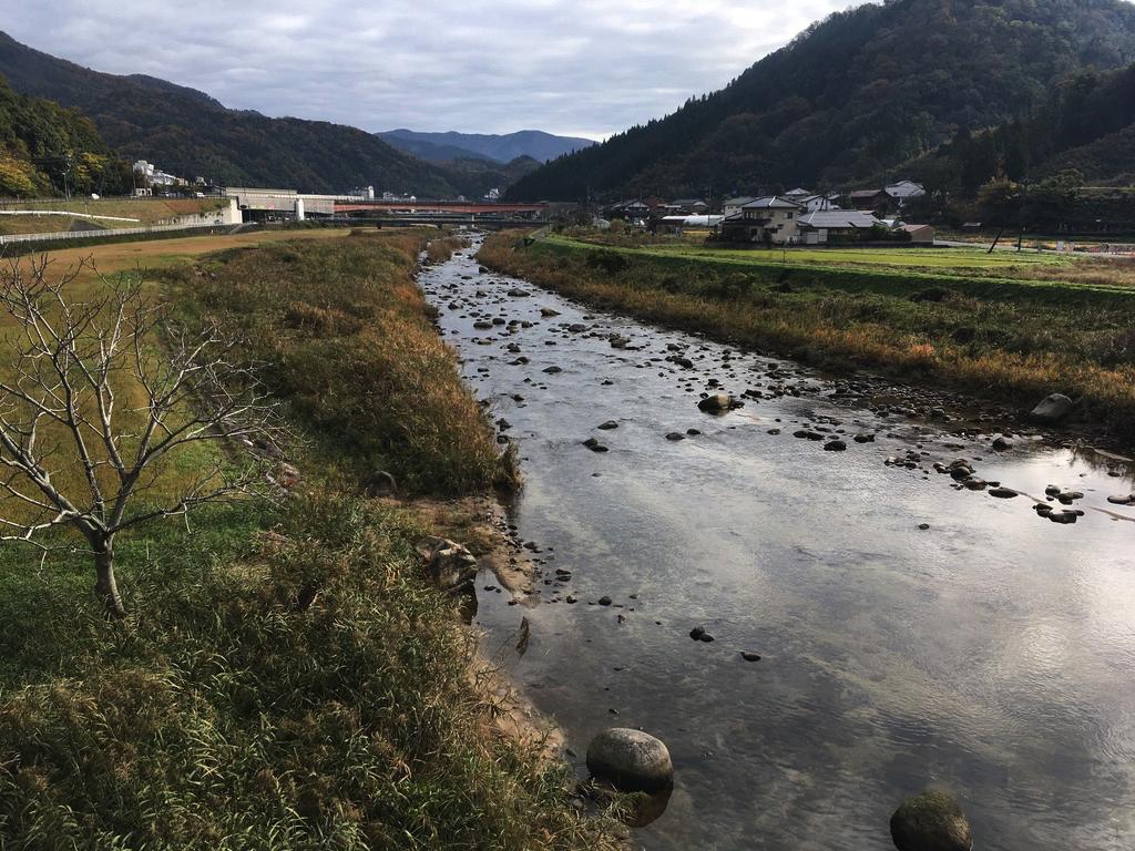 f:id:Hakuto-MA:20200527201856p:plain