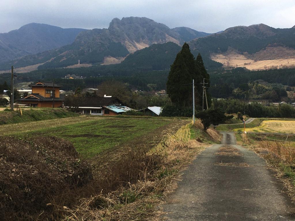 f:id:Hakuto-MA:20200603210834p:plain