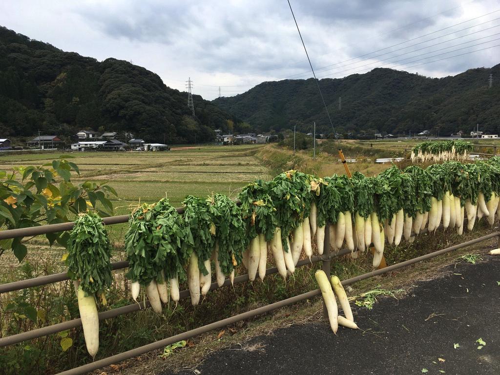 f:id:Hakuto-MA:20200605203801p:plain