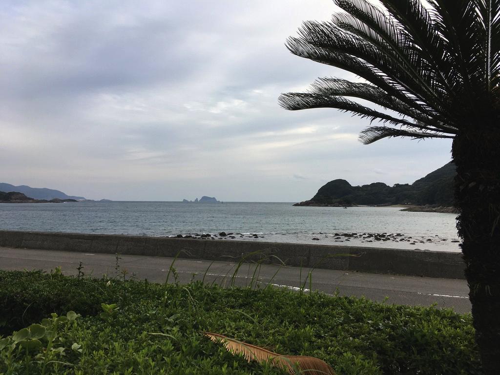 f:id:Hakuto-MA:20200606210450p:plain