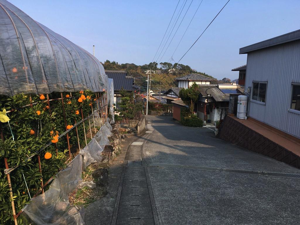 f:id:Hakuto-MA:20200616125643p:plain