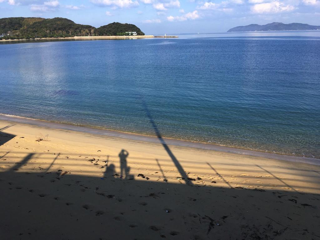 f:id:Hakuto-MA:20200617143328p:plain