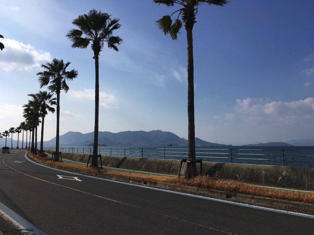 f:id:Hakuto-MA:20200701211006p:plain