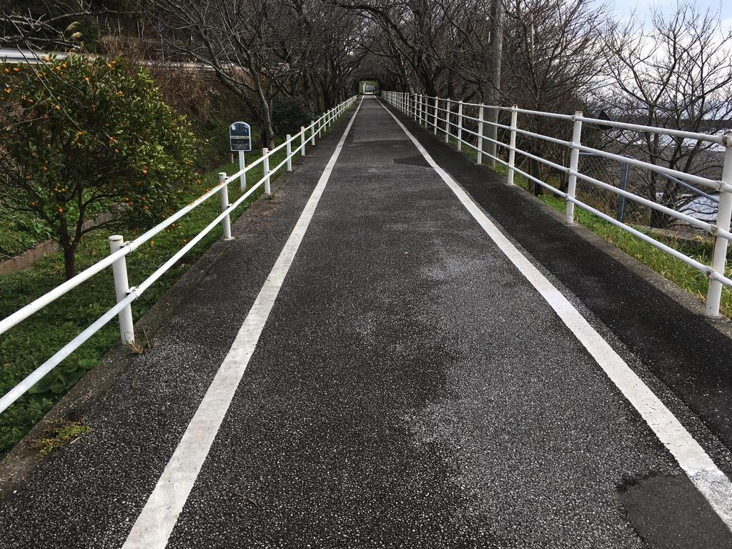 f:id:Hakuto-MA:20200713003438p:plain