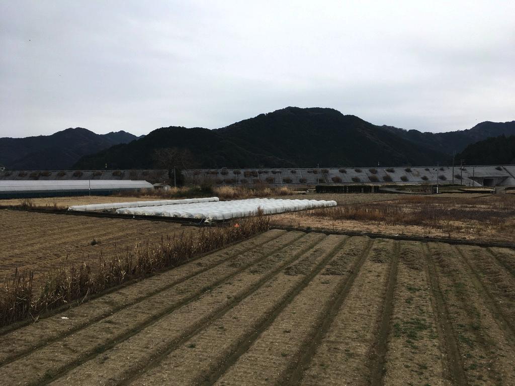 f:id:Hakuto-MA:20200713234705p:plain