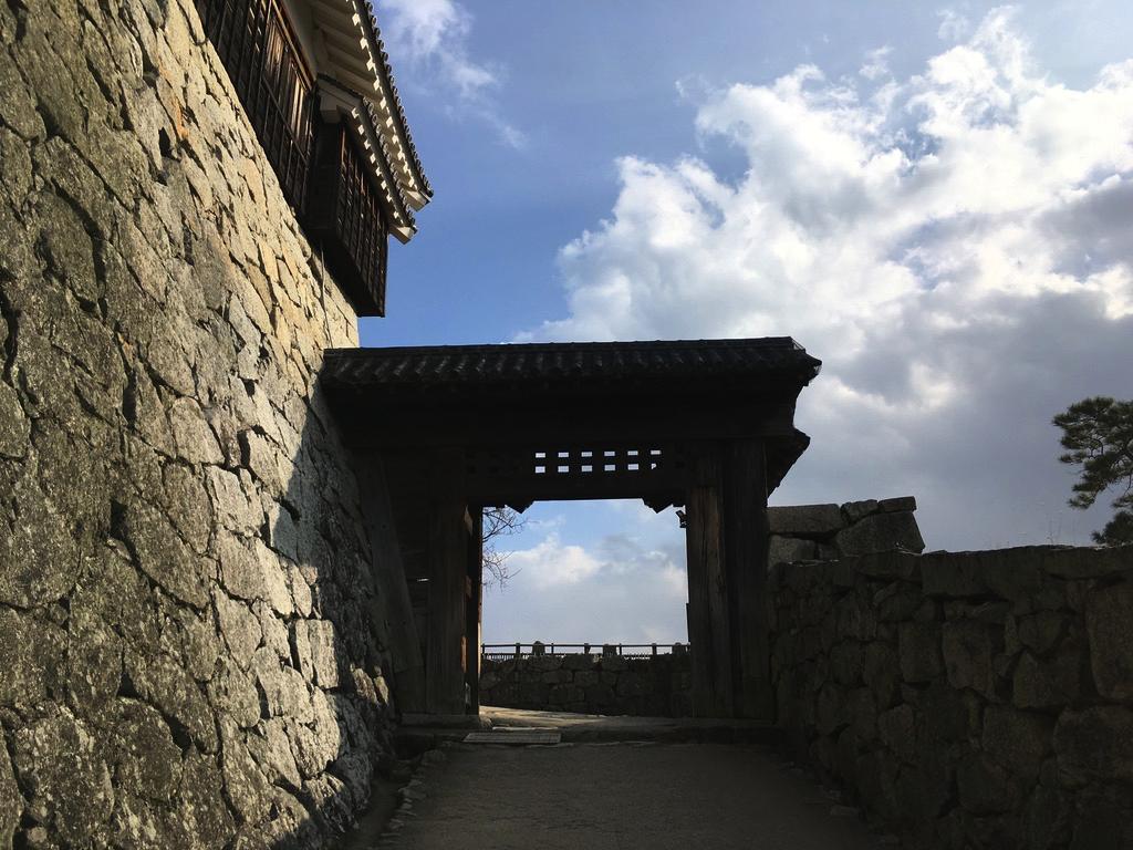 f:id:Hakuto-MA:20200720230853p:plain