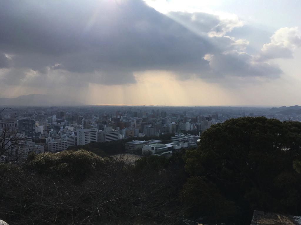 f:id:Hakuto-MA:20200720230945p:plain