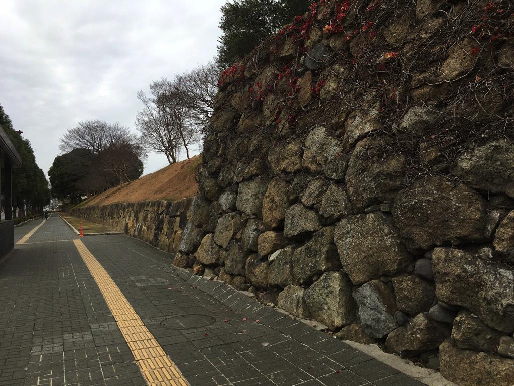 f:id:Hakuto-MA:20200726220214p:plain