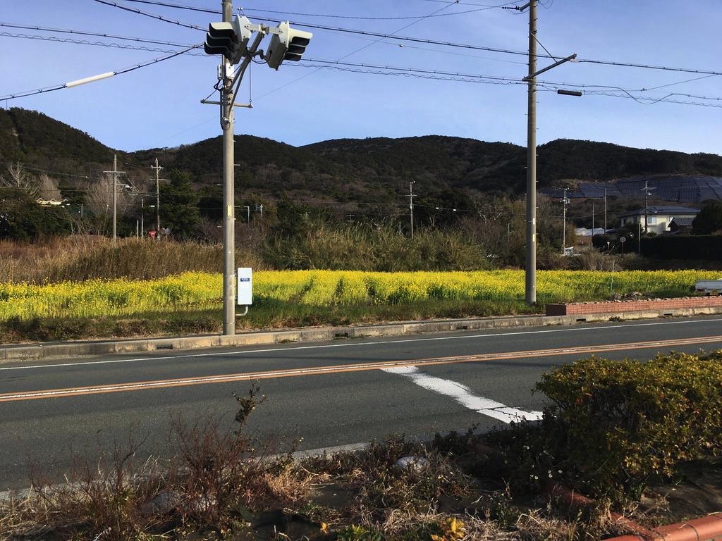f:id:Hakuto-MA:20200811010423p:plain