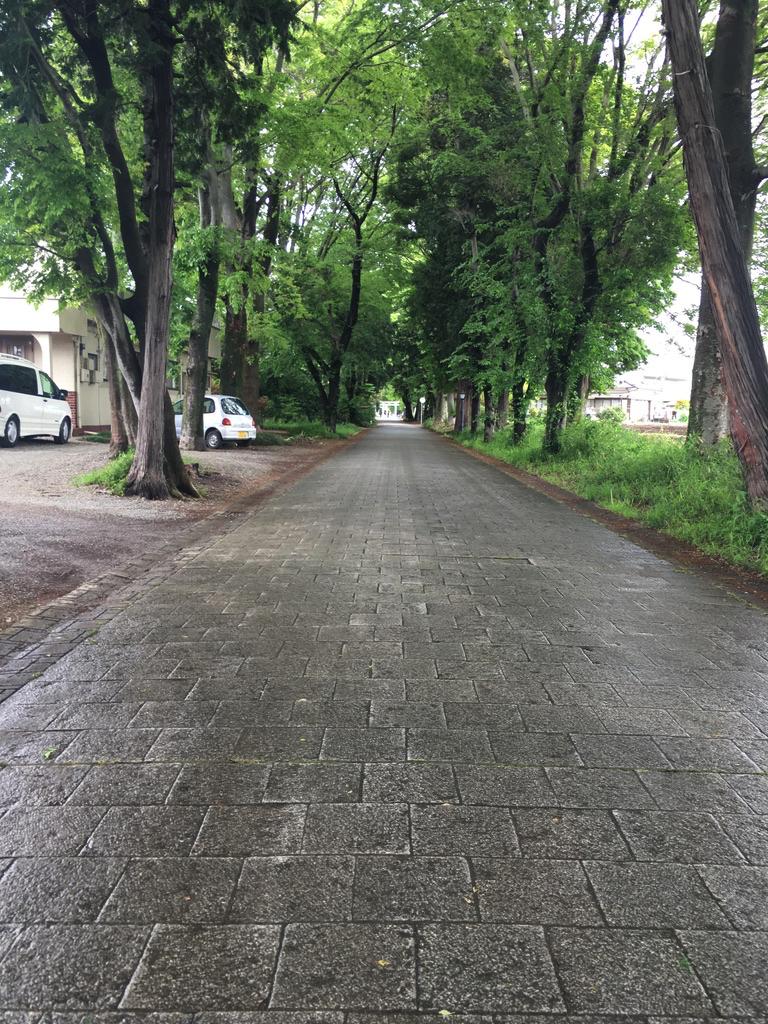 f:id:Hakuto-MA:20200822205656p:plain