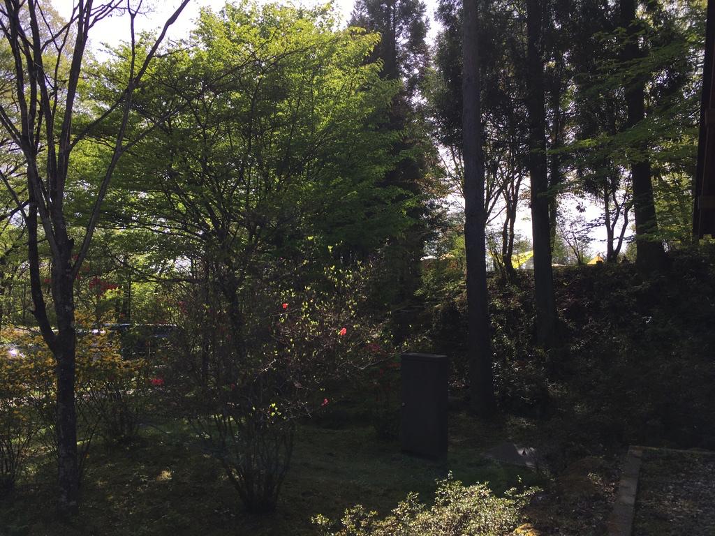 f:id:Hakuto-MA:20200825221928p:plain