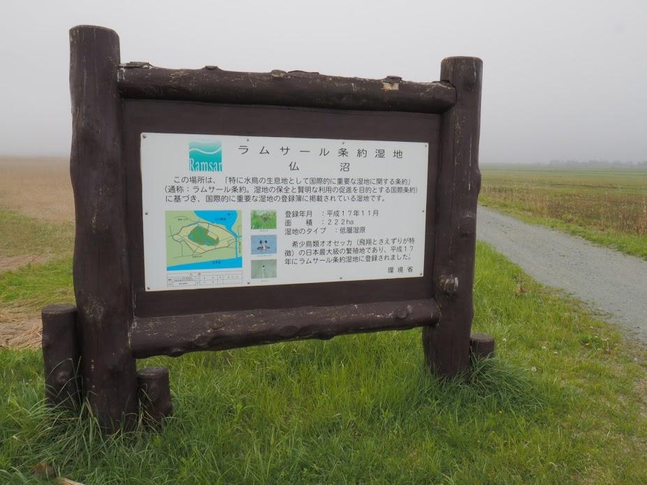 f:id:Hakuto-MA:20200910195936p:plain