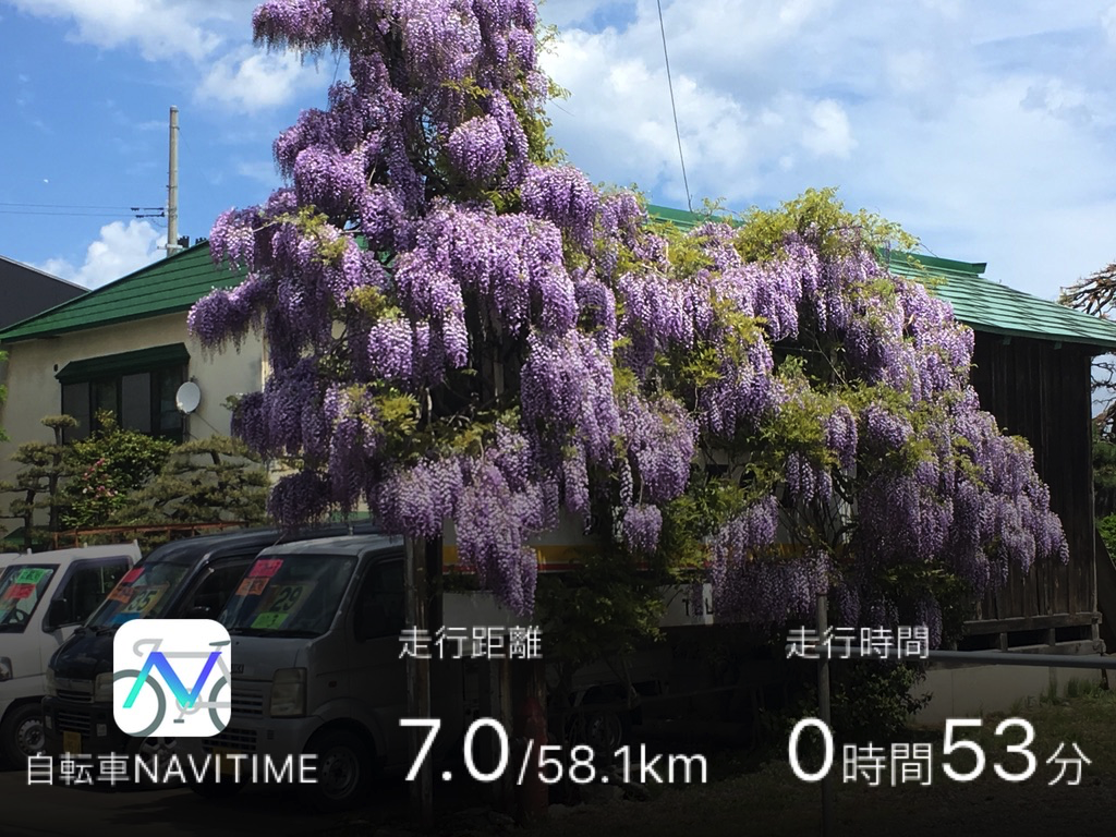 f:id:Hakuto-MA:20200916171341p:plain