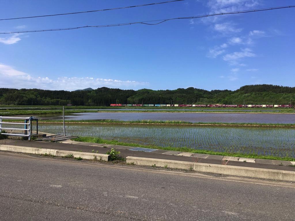 f:id:Hakuto-MA:20200916172558p:plain