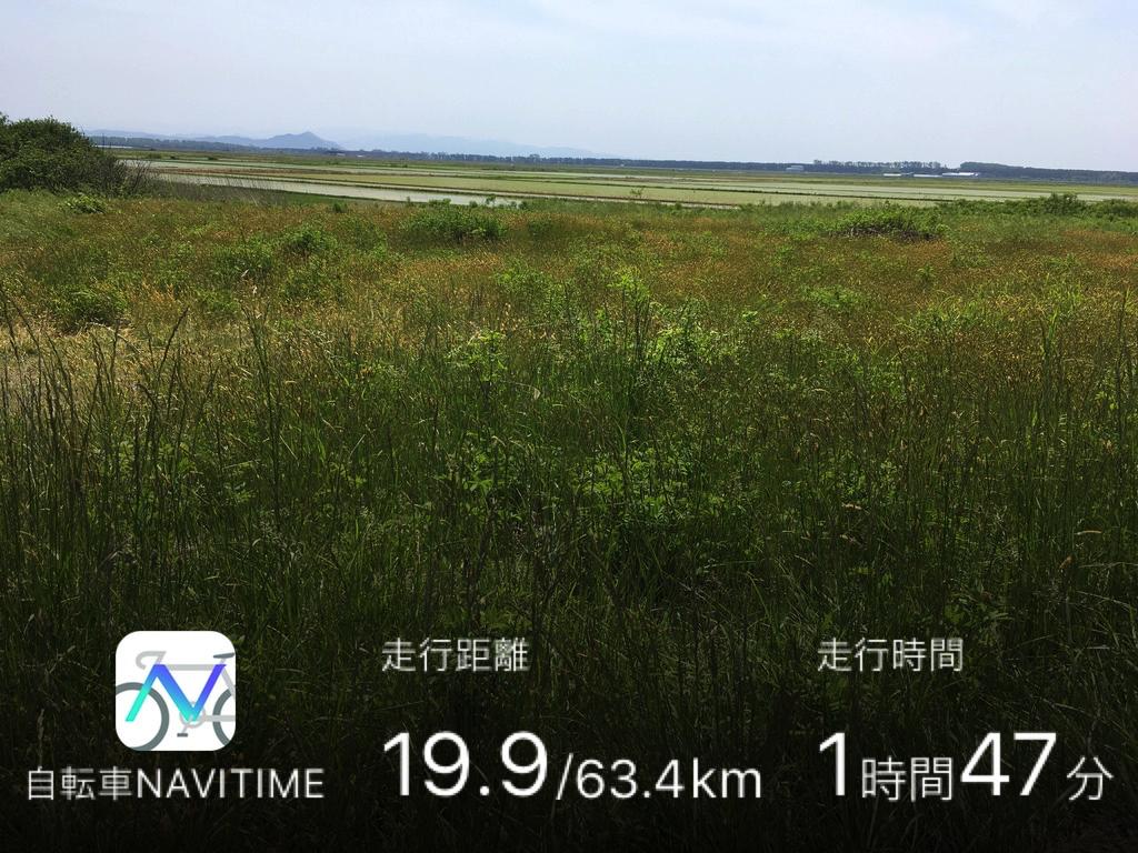 f:id:Hakuto-MA:20200921204735p:plain