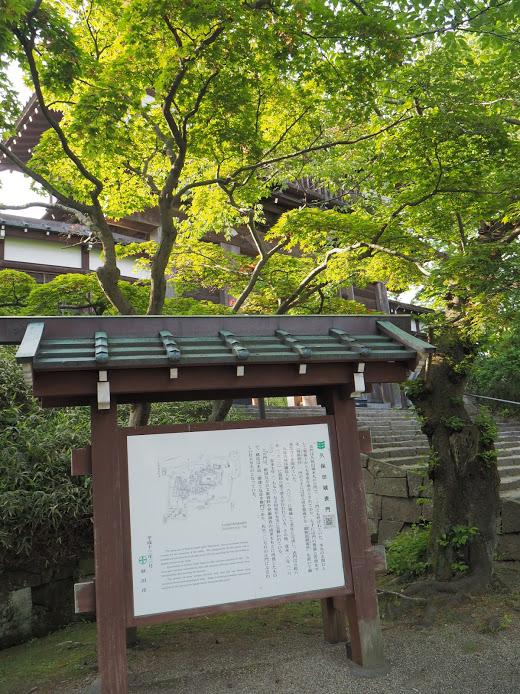 f:id:Hakuto-MA:20200922220538p:plain