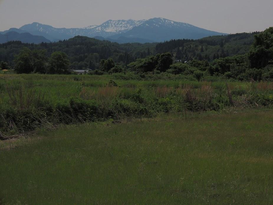 f:id:Hakuto-MA:20200929230541p:plain