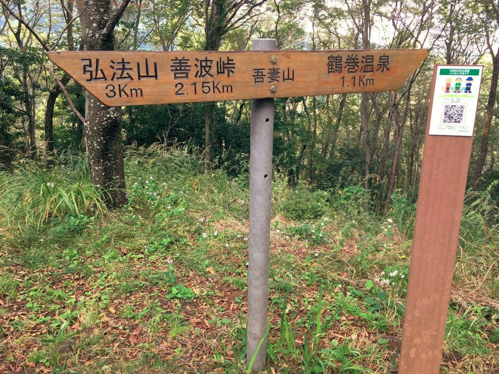 f:id:Hakuto-MA:20201026234649p:plain