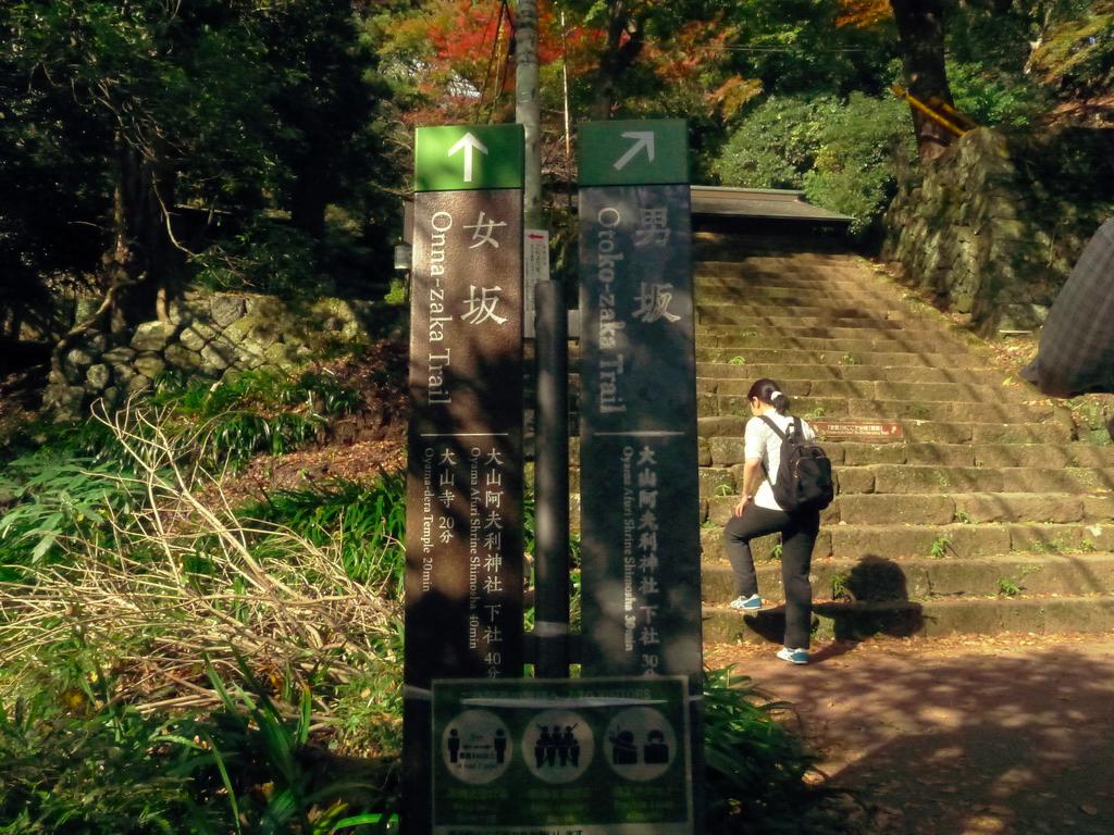 f:id:Hakuto-MA:20201119230058p:plain