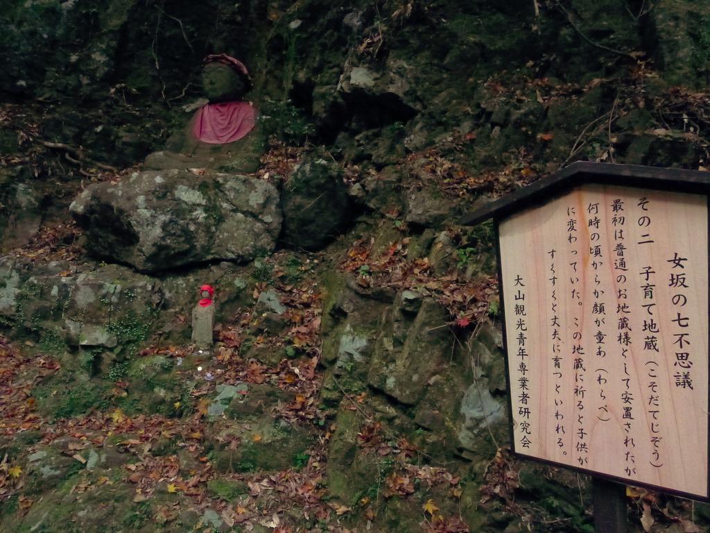 f:id:Hakuto-MA:20201119230456p:plain