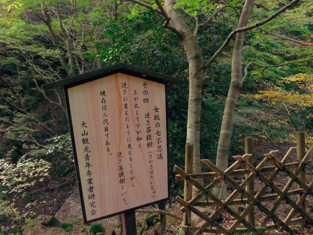 f:id:Hakuto-MA:20201119230751p:plain