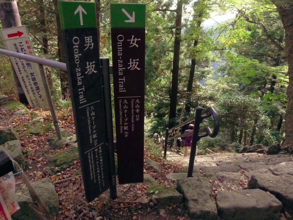 f:id:Hakuto-MA:20201119231634p:plain