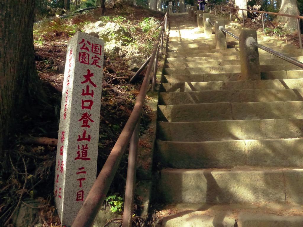 f:id:Hakuto-MA:20201119232930p:plain