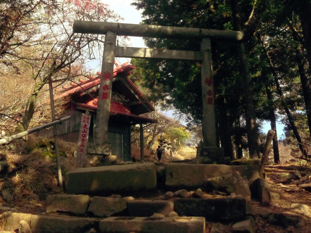 f:id:Hakuto-MA:20201119233650p:plain
