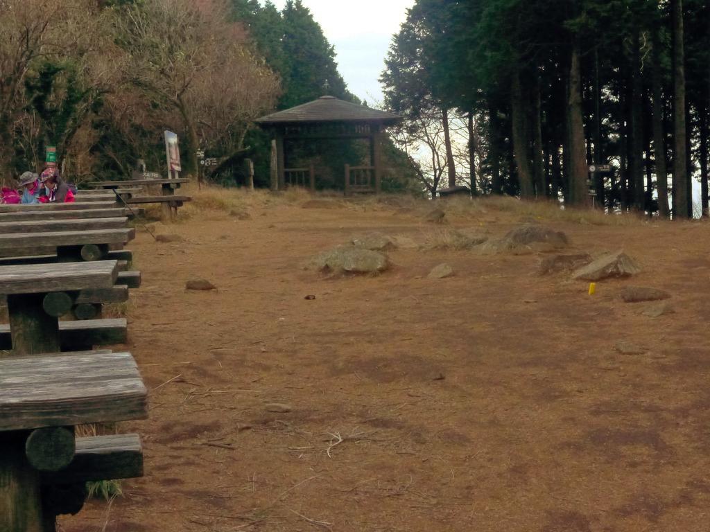 f:id:Hakuto-MA:20201120002123p:plain