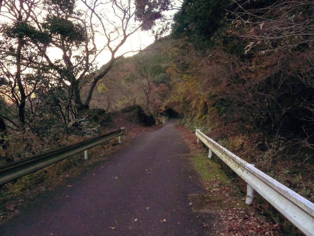f:id:Hakuto-MA:20201217004650p:plain