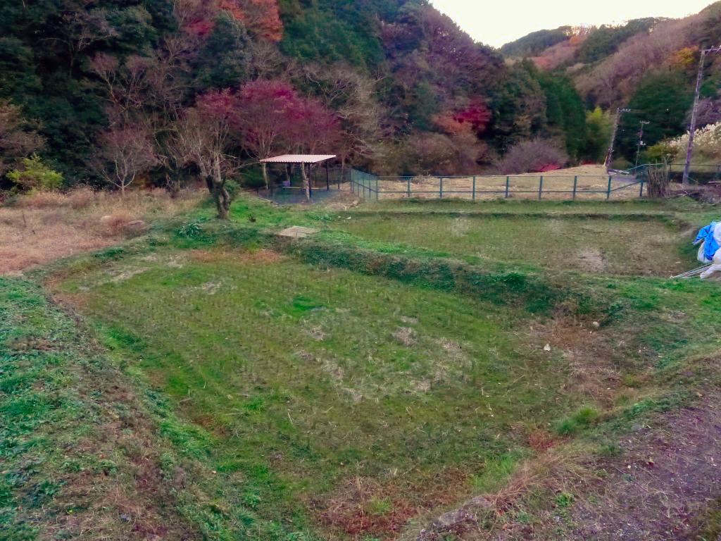 f:id:Hakuto-MA:20201217005010p:plain
